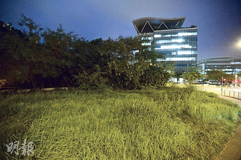 科技園公司向城規會提交申請,擬於科學園入口附近一幅約3萬平方呎的「政府、機構或社區」用地興建單幢大樓「創新斗室」,提供約500個宿位,步行至科學園只需5分鐘。(楊柏賢攝)