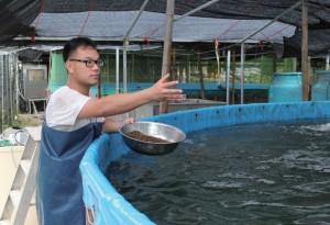 餵魚講求耐性,切忌一次倒光魚糧,而是要分批拋灑,使每條魚都有足夠空間進食。