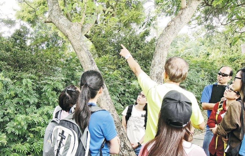 進修考牌 做註冊樹藝師 發揮綠色專業